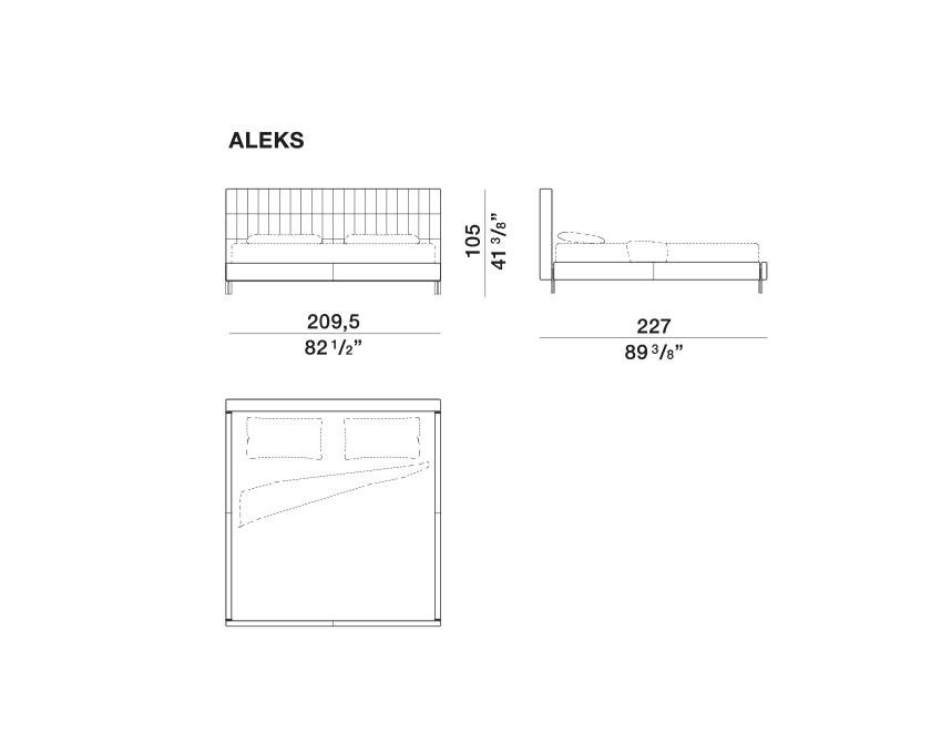 Anton - ALEKS