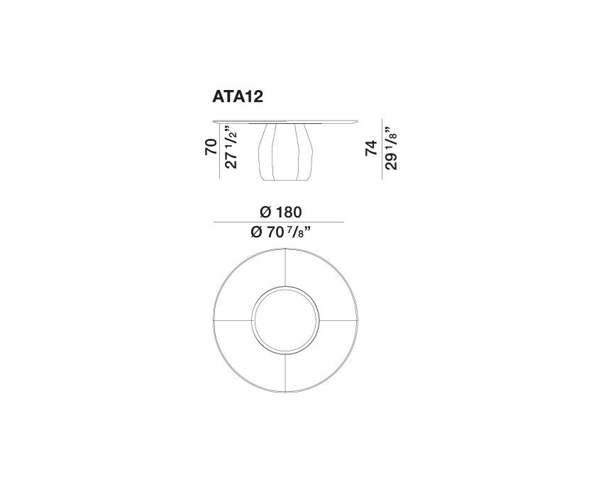 Asterias - ATA12