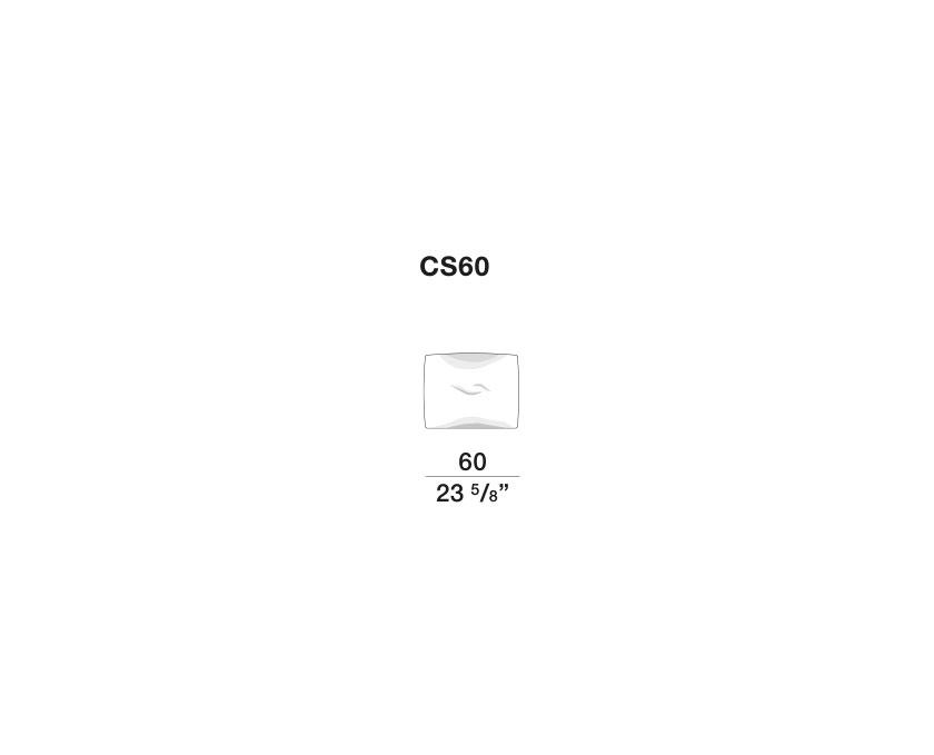 Gregor - CS60